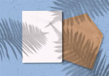 Envelope with a sheet of paper on a blue background. Mockup with overlay of plant shadows . Natural light casts a shadow from above.