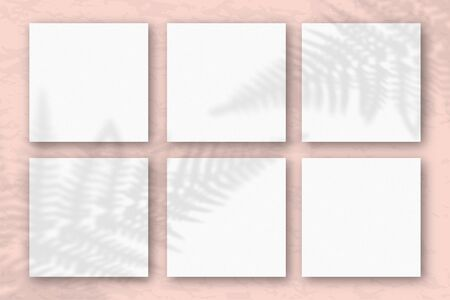 6 square sheets of white textured paper on the pink wall background. Mockup with an overlay of plant shadows. Natural light casts shadows from the fern leaves. Flat lay, top view.