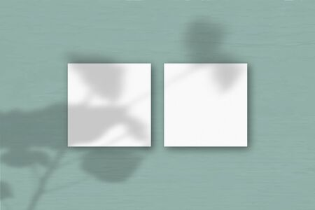 2 square sheets of white textured paper on the green wall background. Mockup overlay with the plant shadows. Natural light casts shadows from the geraniums. Flat lay, top view. Horizontal orientation