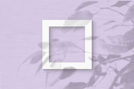 The square sheet of white textured paper on the lilac wall background. Mockup with an overlay of plant shadows. Natural light casts shadows from the leaves of an exotic plant. Flat lay, top view.