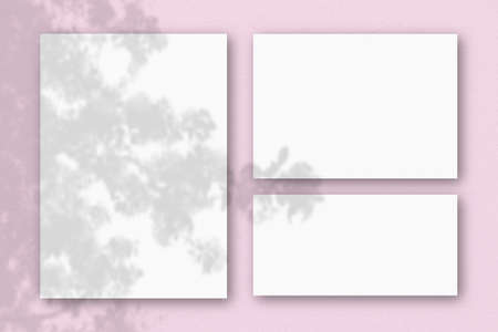 Several horizontal and vertical sheets of white textured paper on the background of a pink wall. Natural light casts shadows from an exotic plant. Flat lay, top view. Horizontal orientation