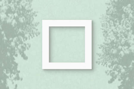 The square sheet of white textured paper on the light green wall background. Mockup with an overlay of plant shadows. Natural light casts shadows from the leaves of an exotic plant. Flat lay, top view.