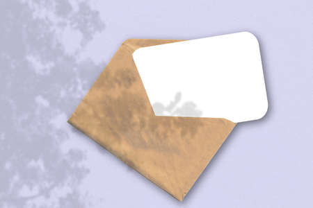An envelope with a sheet of textured white paper on the lilac background. Mockup with an overlay of plant shadows. Natural light casts shadows from an exotic plant. Horizontal orientation.