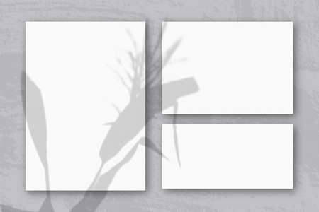 Several horizontal and vertical sheets of white textured paper against gray wall background. Mockup with an overlay of plant shadows. Natural light casts shadows from a Spikelets and leaves