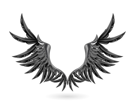 artificial wing: Black wings Illustration