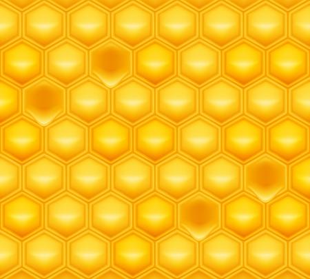 Honey comb: Honeycomb