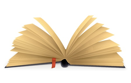 Open book Stock Vector - 13696032