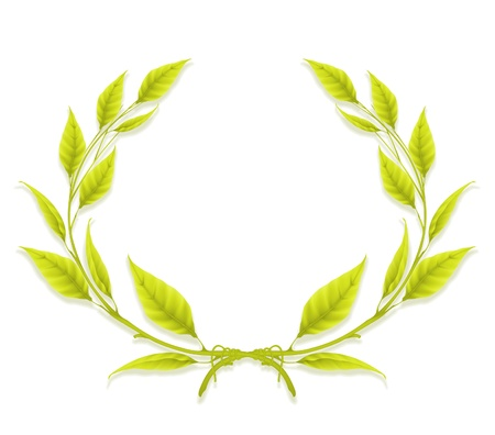 laurel leaf: Laurel Wreath, Design Element Illustration