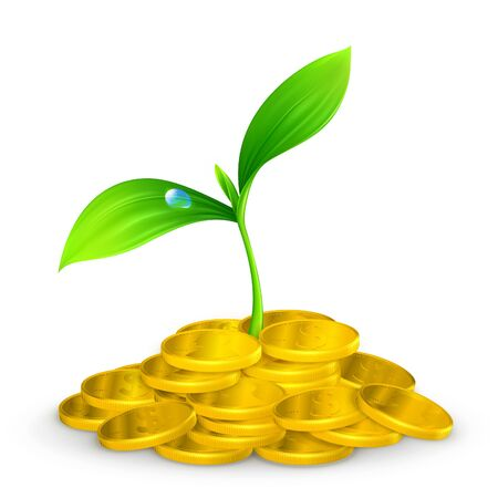 stack of dollars: Plant and coins