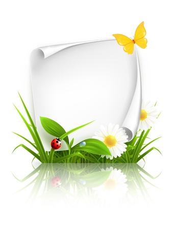 mariquitas: Primavera marco Vectores