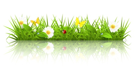 La hierba verde Ilustración de vector