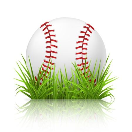 baseball field: Baseball on grass