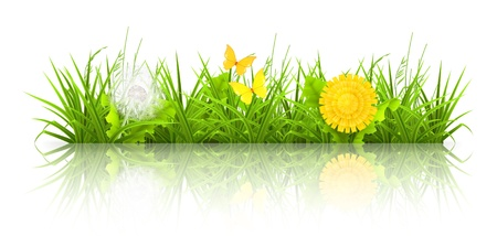mesh background: Dandelions and grass