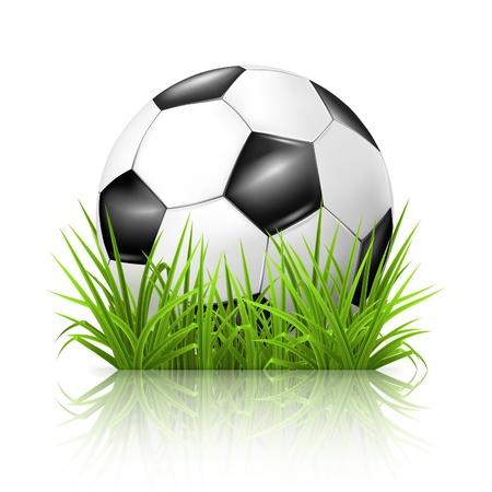 pelota de futbol: Bal�n de f�tbol sobre el c�sped Vectores