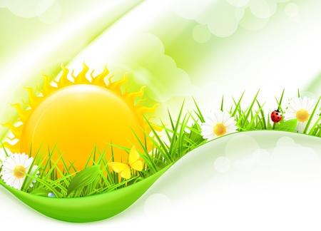 sunny day: Paisaje de verano