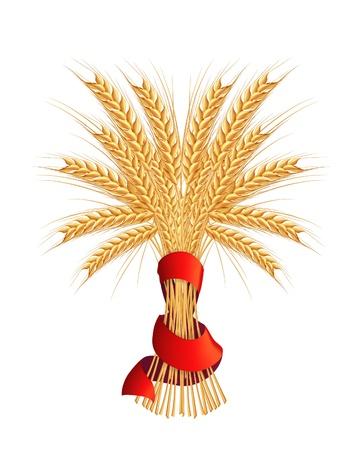 sheaf: Gavilla de trigo Vectores