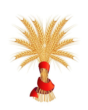 Sheaf of wheat Stock Vector - 13798580