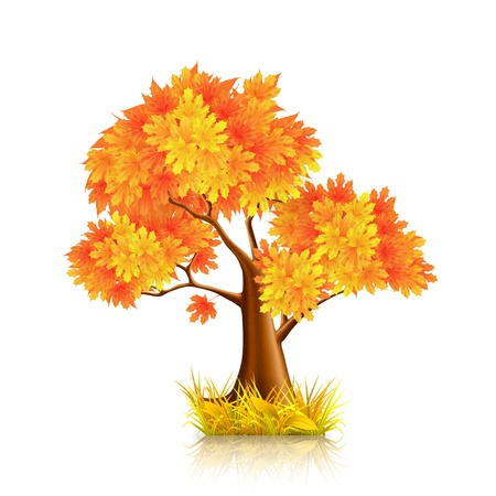 Red Tree Stock Vector - 13798638