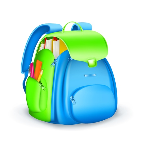 book bags: School bag