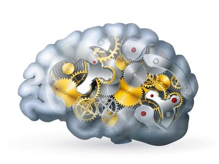 anatomy brain: Cervello meccanico Vettoriali