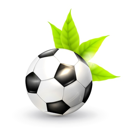 Soccer ball and green leaves Vector