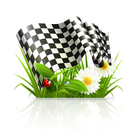car garden: Checkered flag in grass