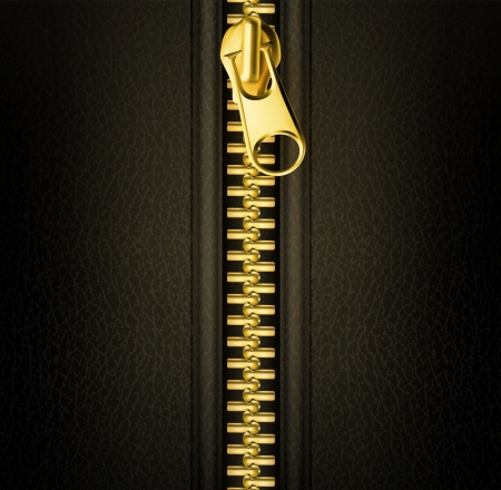 metal fastener: Zipper gold