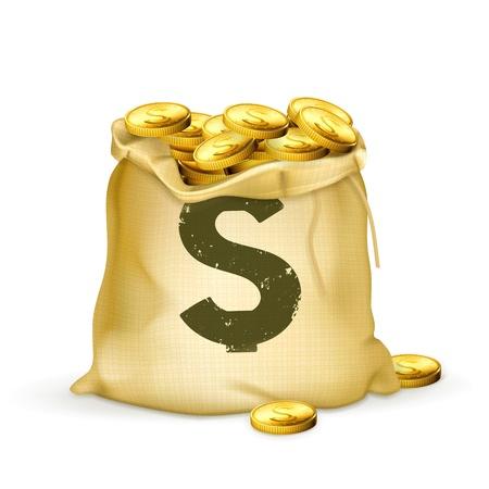 stack of cash: Bolsa de oro Vectores