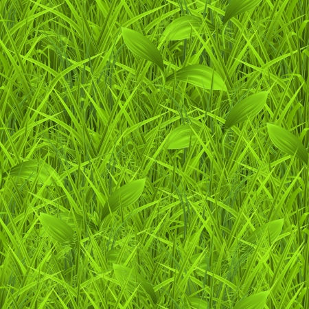 sedge: Green grass, seamless pattern Illustration