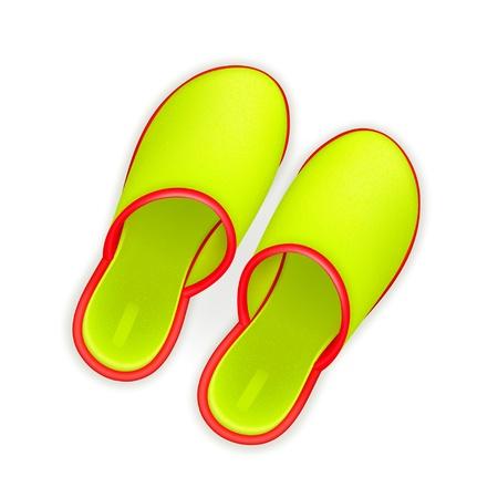 Slippers Stock Vector - 13899600