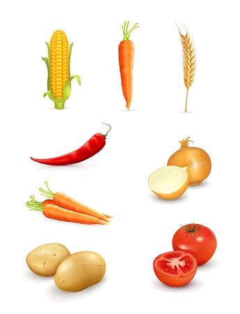 Verduras Ilustración de vector