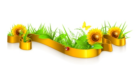 sedge: Ribbon in the grass