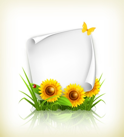 Sunflowers and paper Stock Vector - 14277437
