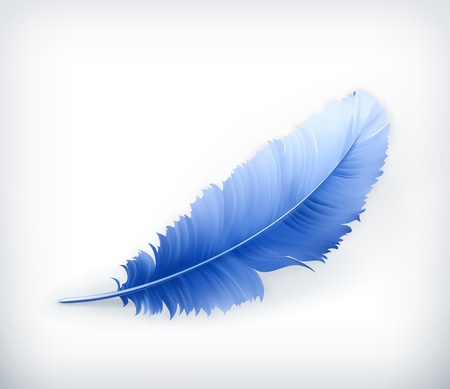 quill: Feather