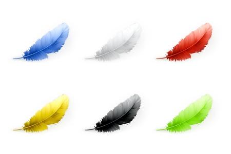 羽セット 写真素材 - 14671514