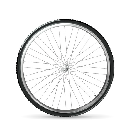 velocipede: Bicycle wheel