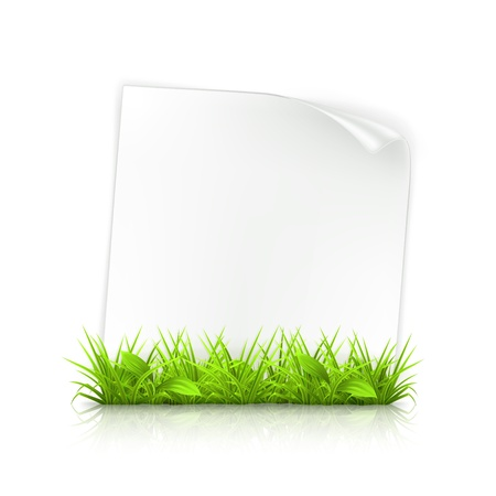 Grass and paper Vector