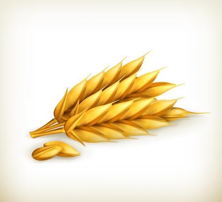 Wheat, icon Stock Vector - 15083579