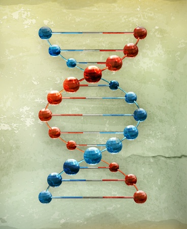 nucleic: Deoxyribonucleic acid, old-style Illustration