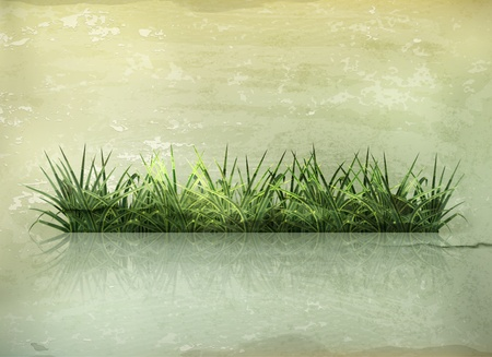 10eps: Grass, old-style Illustration