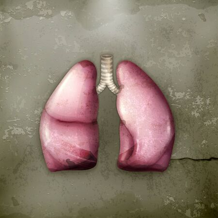 Human lungs, old-style Stock Vector - 15257270