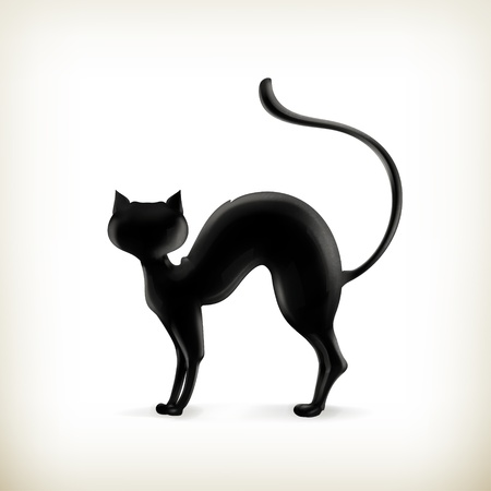 black cat silhouette: Cat silhouette Illustration