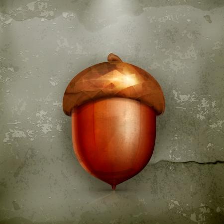 acorn seed: Acorn, old-style