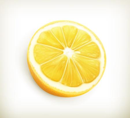 레몬: 레몬 일러스트