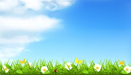 air animals: Spring background