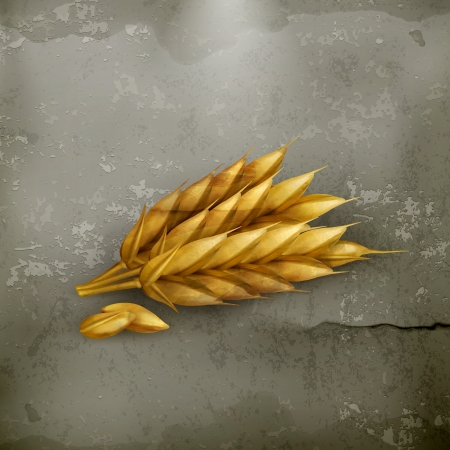 winter wheat: Wheat icon, old-style