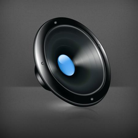 speaker system: Speaker