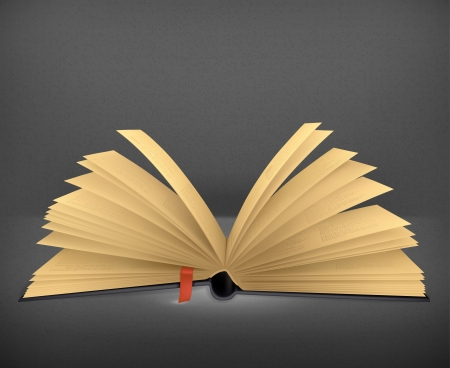 Open book Stock Vector - 19346868