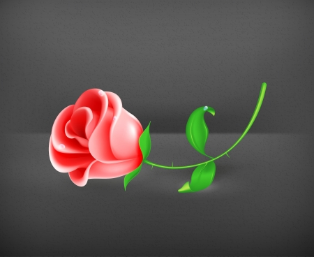 Rose Stock Vector - 19437878