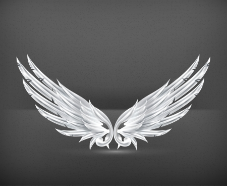 the gothic style: Wings White Illustration